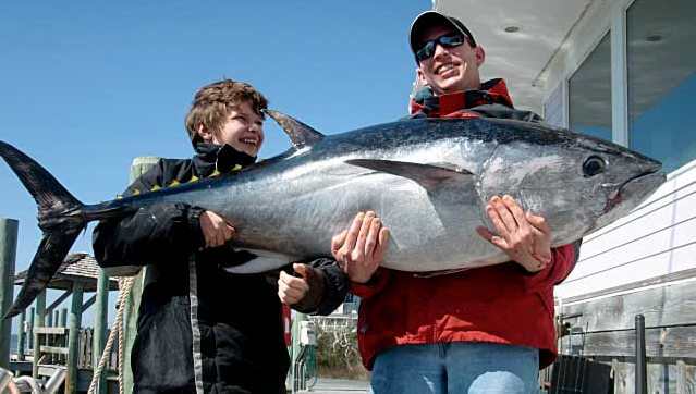 Winter visitors to Salvo often get the opportunity to catch bluefin tuna caught on an offshore charter out of Cape Hatteras.